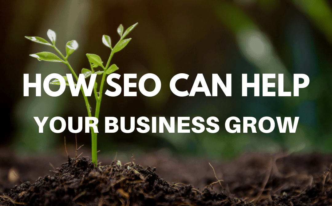 How SEO Can Help Your Business Grow